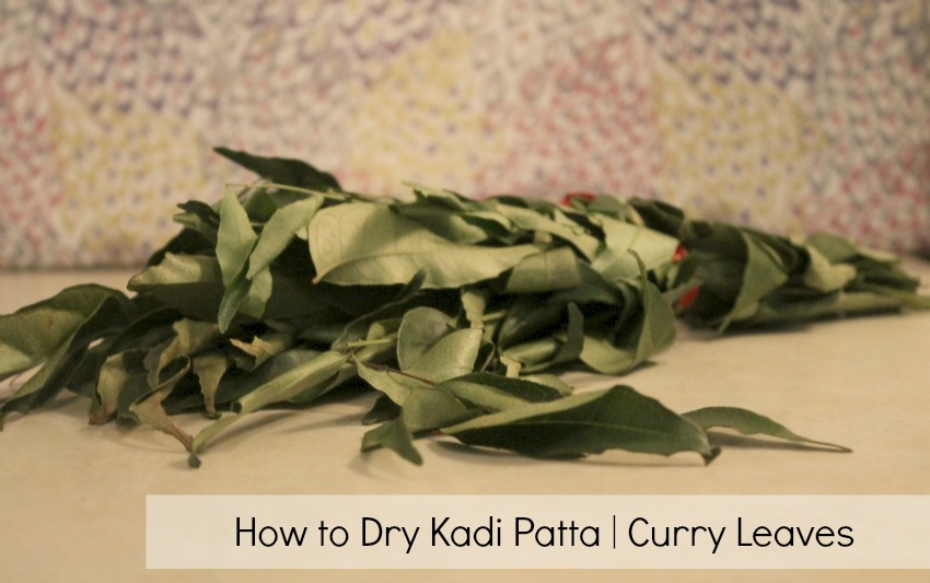 how to dry kadi patta curry leaves