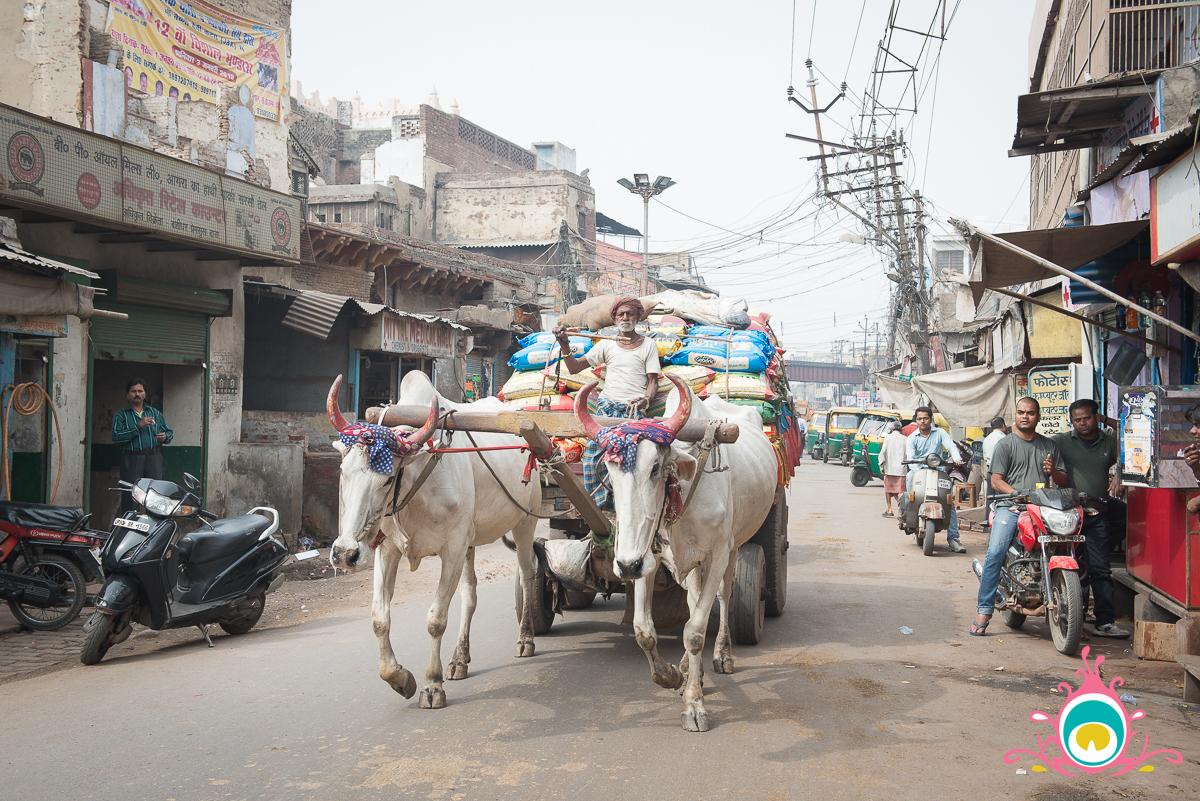 agra travel guide, sikandra bazaar