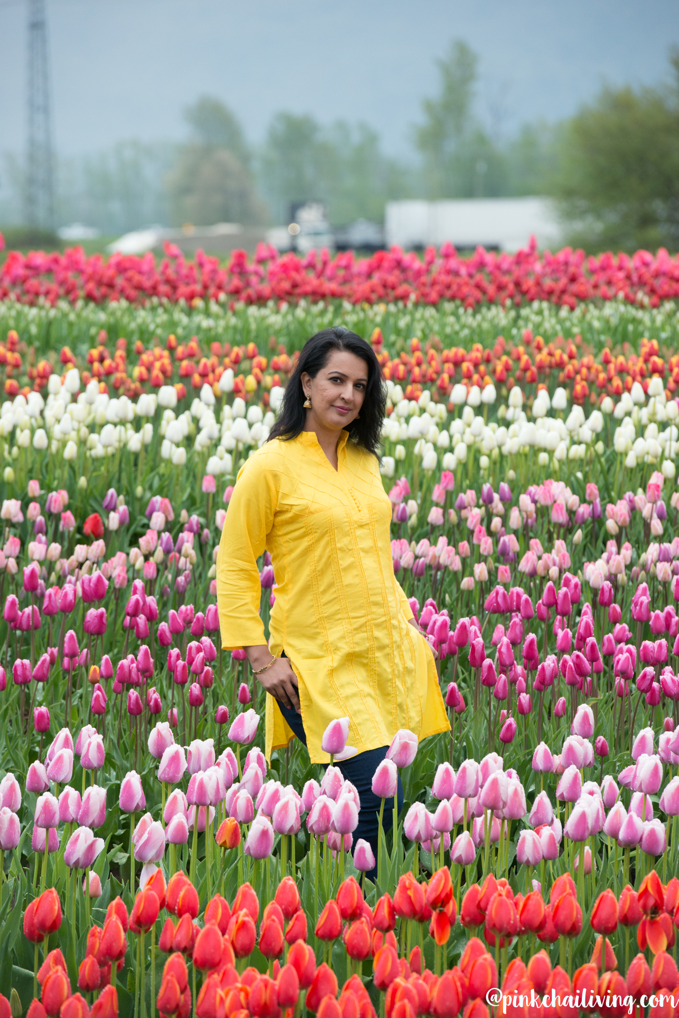 Bloom Tulip Festival Abbotsford: In Pictures
