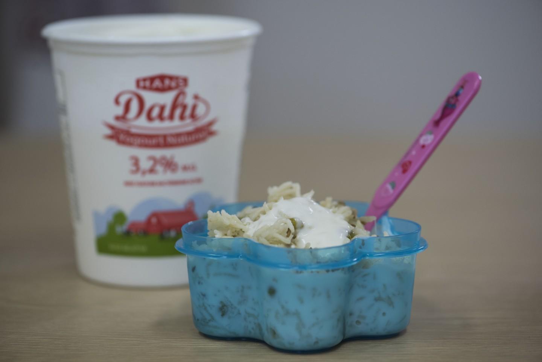 hans dairy 2