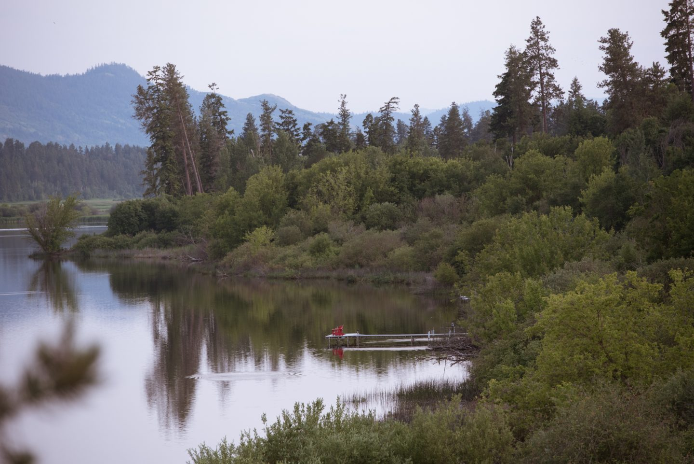 otter lake armstrong bc